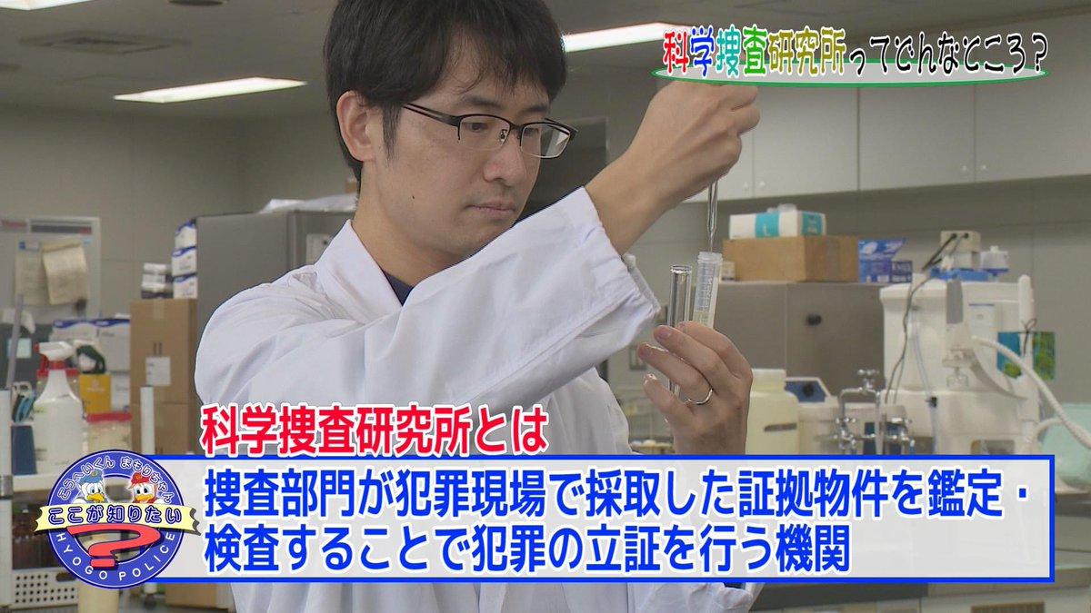 科学捜査研究所 hashtag on Twitter
