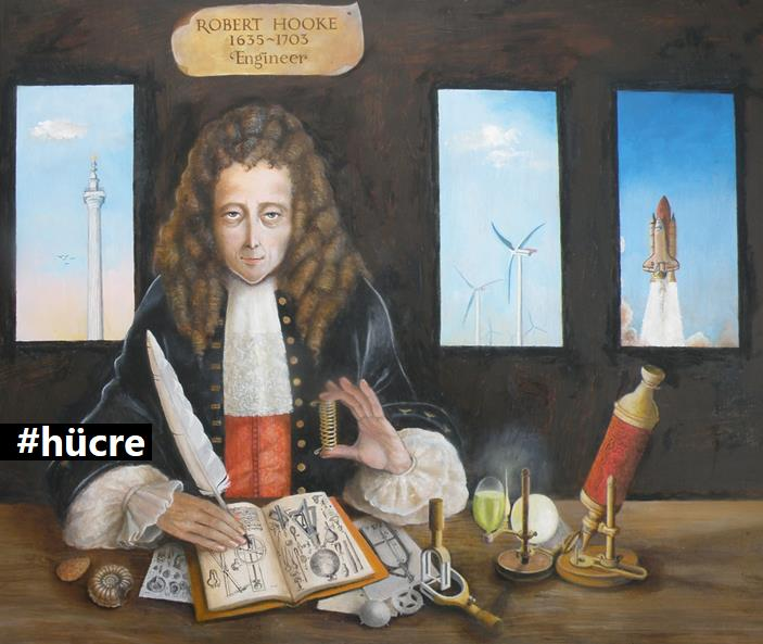 robert hooke essay Berea college, cpo 2162, berea, ky 40404, usa this essay uses robert hooke's micrographia to examine the intersection of visual conventions for portraiture with the viewing of the microscopic world.