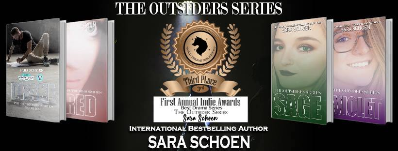Image result for The Outsiders Sara Schoen