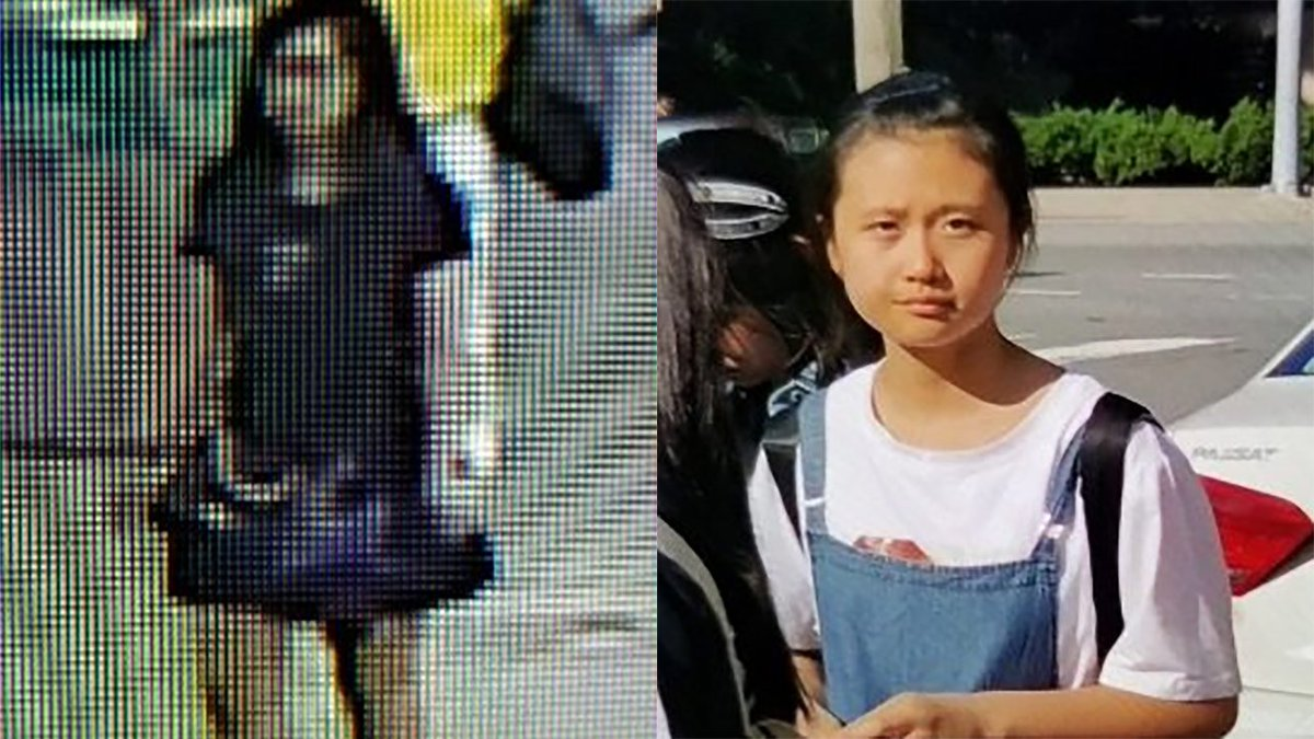 #AmberAlert: Young girl from China abducted from Reagan National Airport  https://