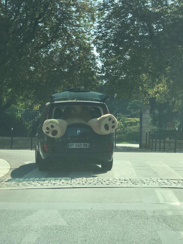 Kidnapping de Winnie l'Ourson en plein Paris dans l'indifférence générale...