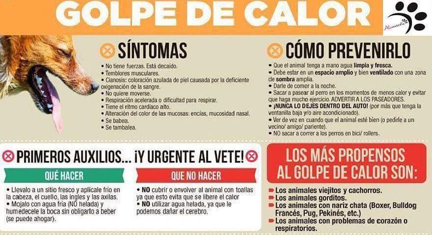 Diego Matos Agudo (@diegomatosag) | Twitter
