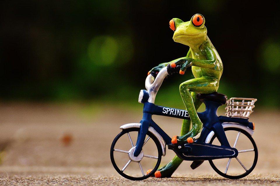 Какой, картинки смешной велосипед