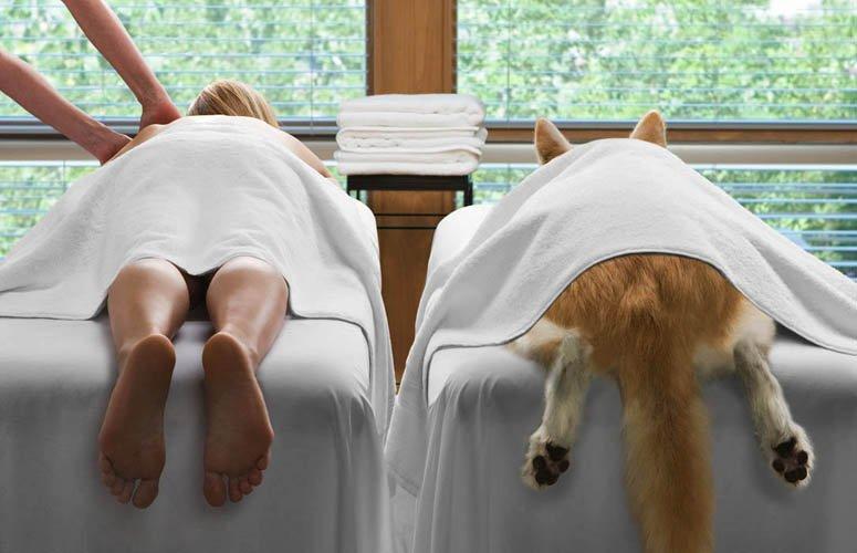 Доброе утро, массаж ног смешные картинки