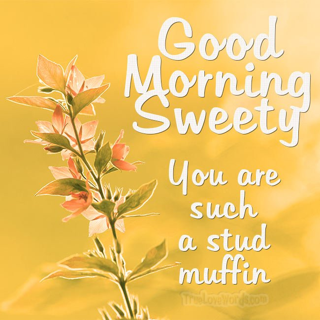 Good morning my stud muffin! #truelovewords #love #dating #relationships #goodmorning  https://truelovewords.com/romantic-good-morning-messages-for-boyfriend/ …