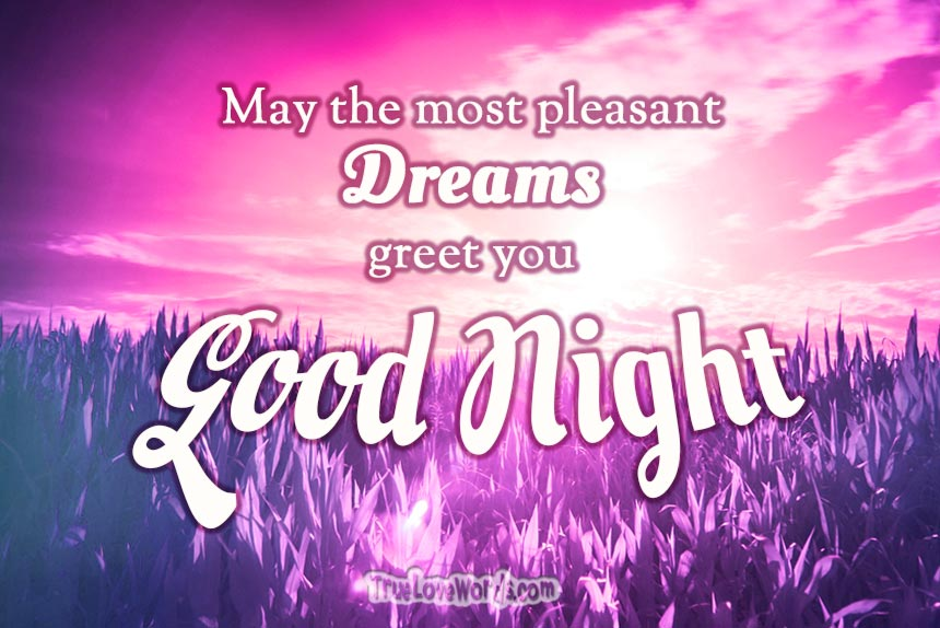 May the most pleasant dreams greet you Good night! #romance #goodnight #dreams #truelovewords #relationships #iloveyou https://truelovewords.com/romantic-good-night-messages-for-the-one-you-love/ …