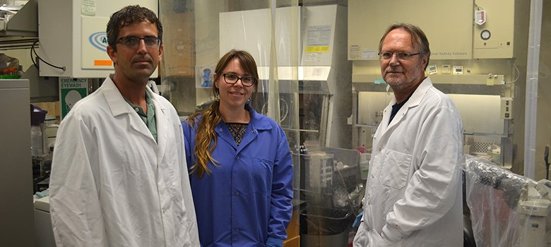 Two collaborative research teams from #UTSA and @UTHealthSA have been awarded a #SALSI grant to help discover new approaches to substance abuse and its prevention. Read more: http://bit.ly/2vpOtzA . #UTSAResearch #SubstanceAbuse @UTSAResearch