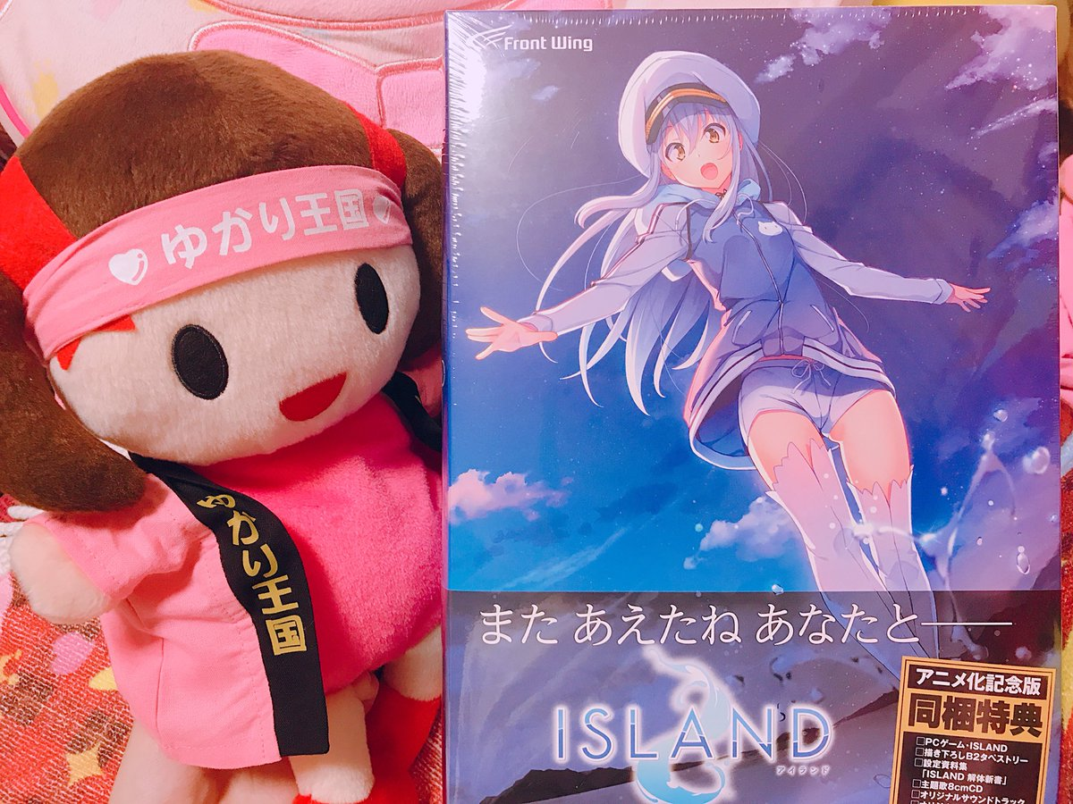 ISLANDに関する画像9