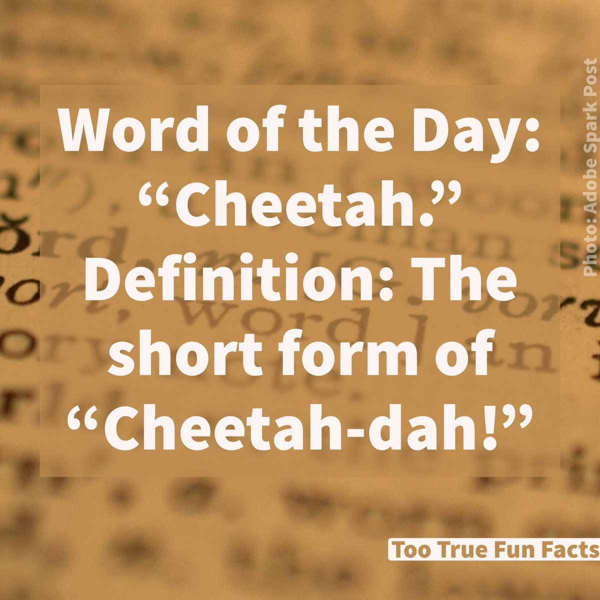 Too True Fun Facts On Twitter Word Of The Day Word Words