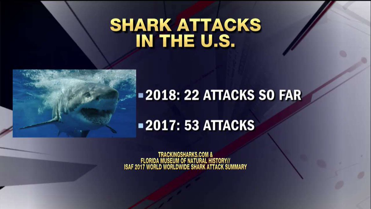 Shark attacks in the U.S.