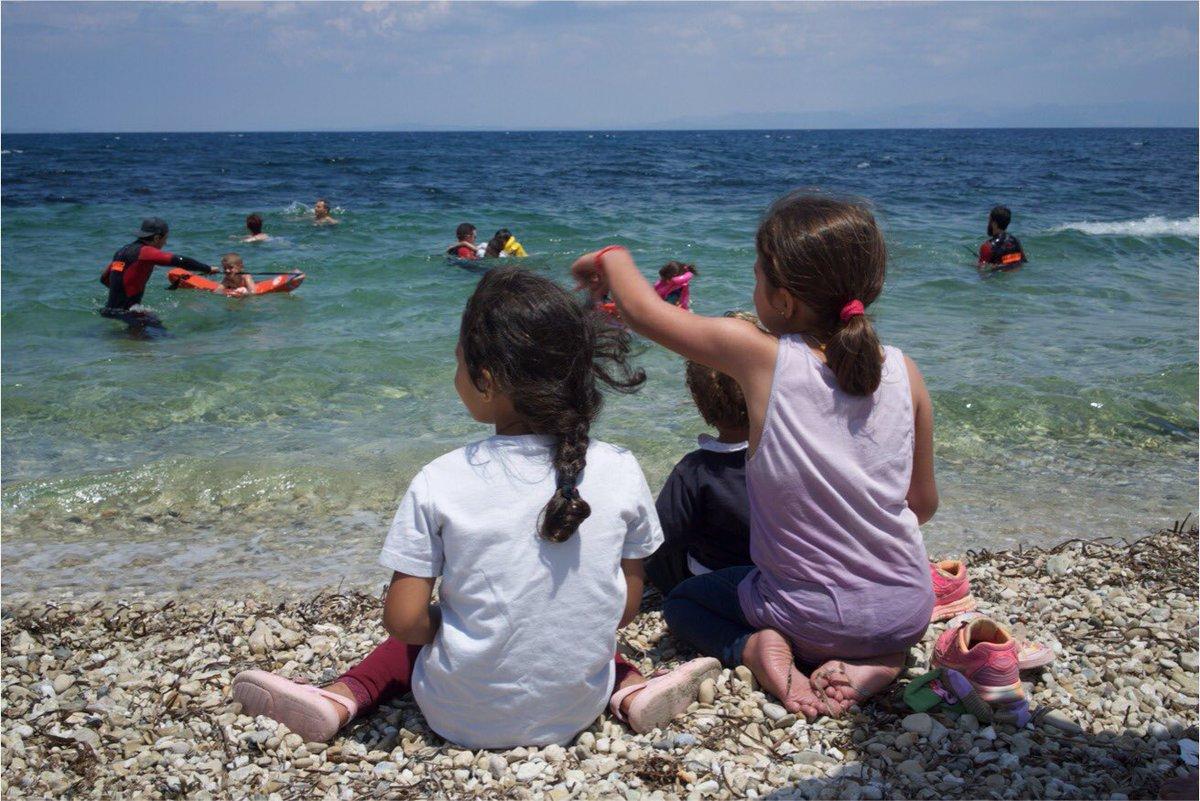 online petrefaktenkunde deutschlands die cephalopoden tübingen