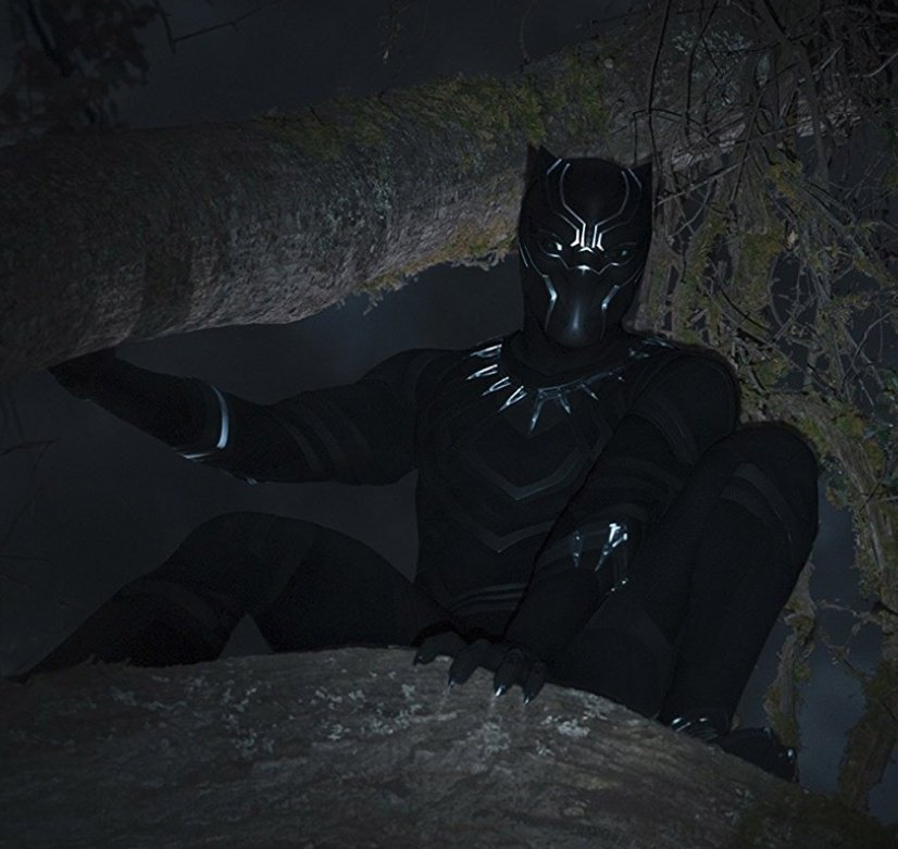 #BlackPanther is an entertaining, if extremely overrated, film. It, unfortunately, is extremely cookie cutter MCU &amp; some CG shots are horrendous, but also pays amazing homage to African Culture, the action is great, &amp; Killmonger is a standout villian. Score: 7.5/10  -@DRMovieNews<br>http://pic.twitter.com/BAWyjGEGkz