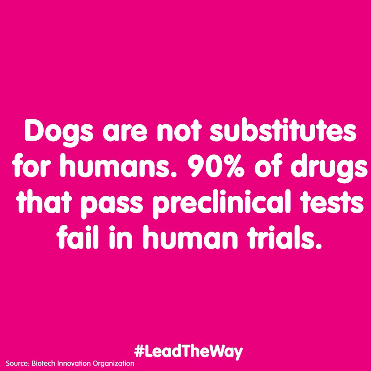 aecf12045e7 We want to end the suffering of dogs in UK laboratories, are you with us?  Sign the petition: http://bit.ly/LTWpetition #LeadTheWaypic.twitter .com/nO9em9T6tC