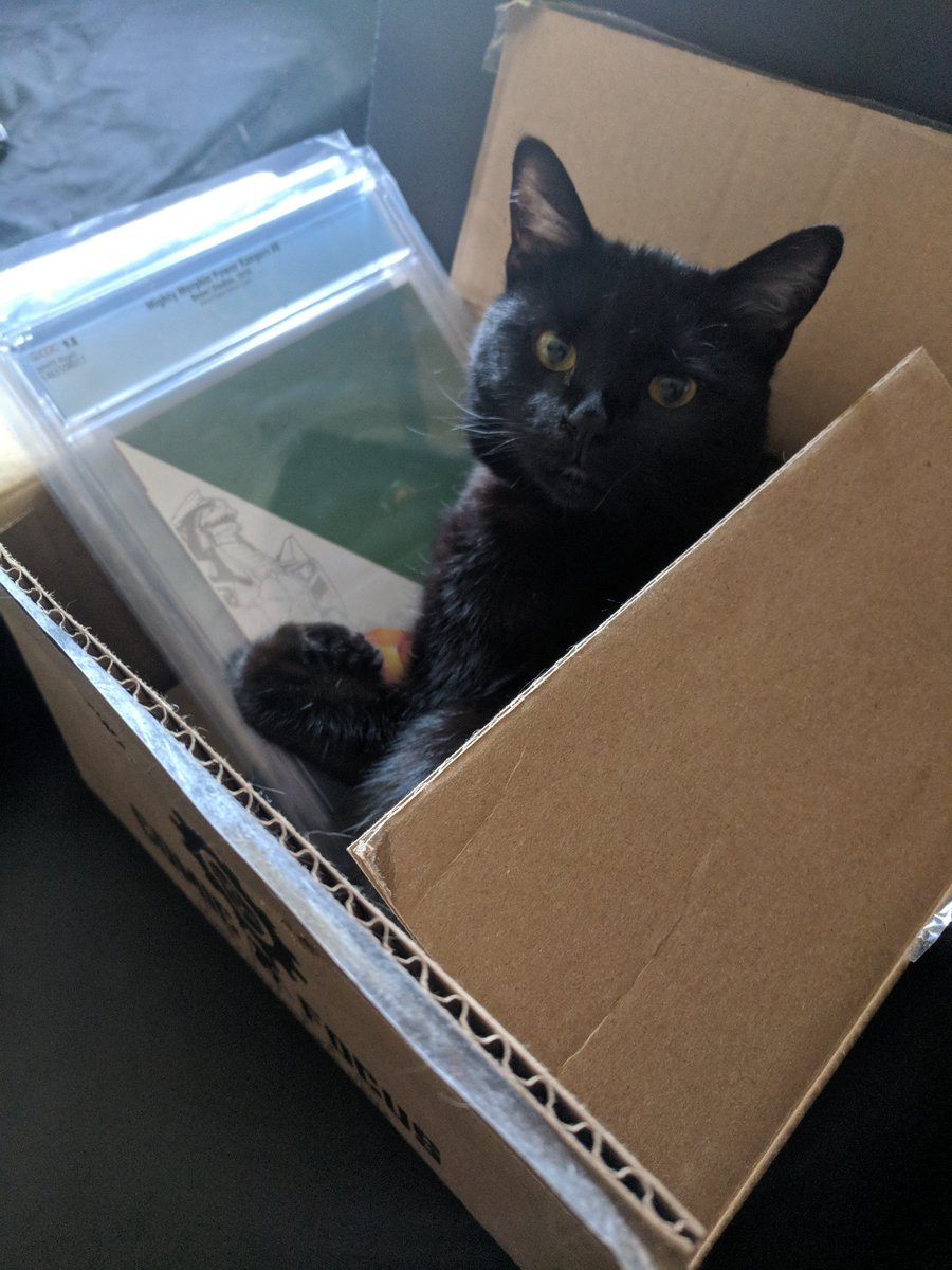 Its #BlackCatAppreciationDay! Marceline (the Scream Queen) helps me pack all the goodies I take to retailers on the @boomstudios #DiscoverYourComicShop tour. Here she is double checking CGCs handy work. They were purrfect 9.8s.