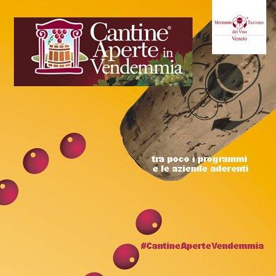 #CantineAperteVendemmia in #Veneto fra poco ci siamo  - Ukustom