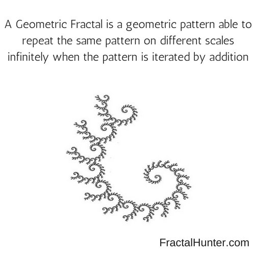 free Tropical Geometry and Mirror Symmetry