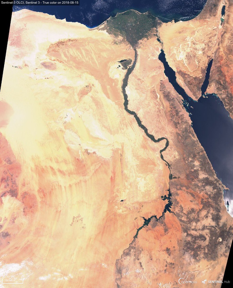His Majesty the Nile as seen by #Sentinel3 on 15 August  Over 1300 km north to south in one shot!<br>http://pic.twitter.com/4qwvv0we6y