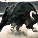 #Ferentino. Incornato da un toro: è ancora grave l'uomo elitrasportato d'urgenza https://t.co/wakQ4xeXZe