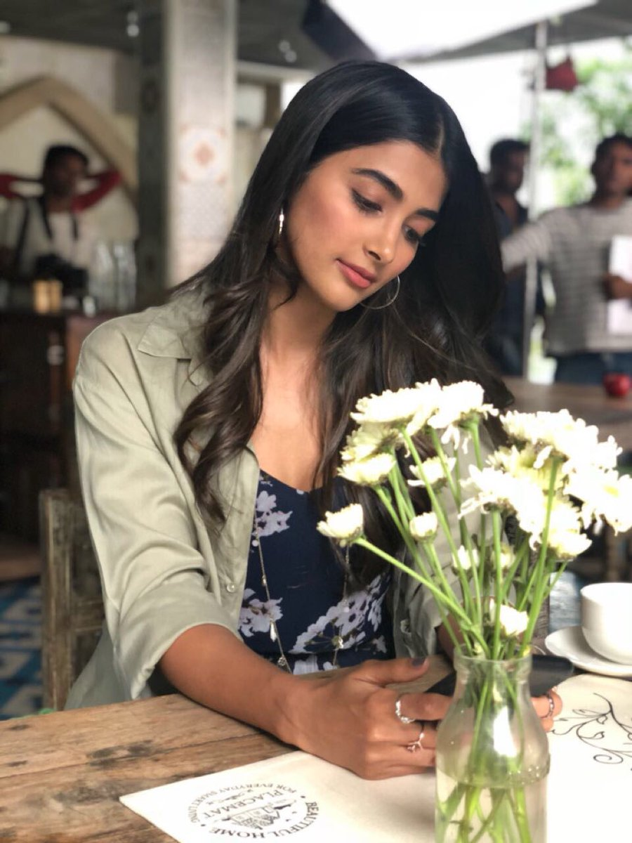 Bad News for Pooja Hegde fans!
