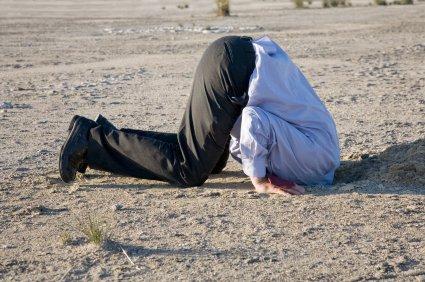 buy tuée pour lhonneur lhistoire vraie dune