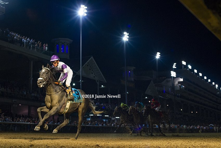 test Twitter Media - Big Saturday for leading 3rd crop stallion @AirdrieStud CREATIVE CAUSE. G1W Pavel (seen winning G1 Stephen Foster under the lights) is 2nd choice in the G1 Pacific Classic @DelMarRacing and G3W Significant Form goes favorite in the G2 Lake Placid in Satatoga. https://t.co/IxDVttqbXx