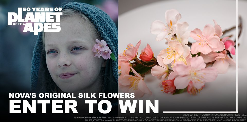 Our 5th Sweeps is brought to you in partnership with @boomstudios to celebrate PLANET OF THE APES: VISIONARIES! Enter now to win Novas original Silk Flowers prop from #WarforthePlanet! smarturl.it/8igb75