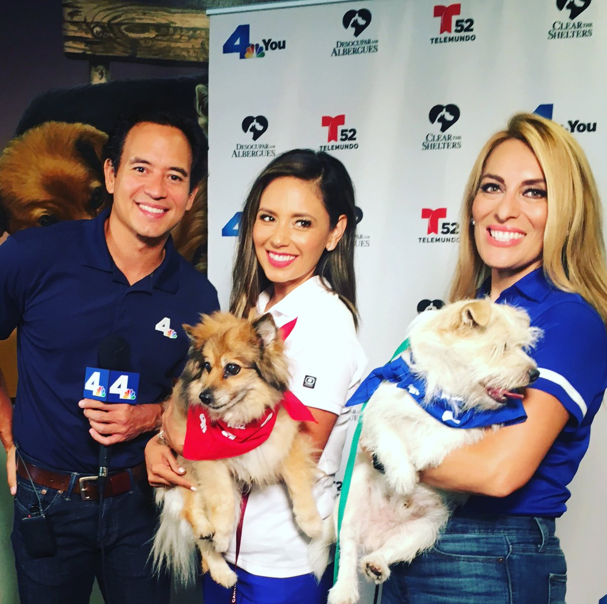 Love teaming up with @telemundo52 and @dinorah_perez To help #ClearTheShelters at the East Valley Van Nuys Shelter  @TELEMUNDO52<br>http://pic.twitter.com/DHAthhpDC2