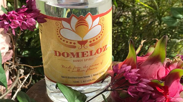 Its World Honey Bee Day! The couple behind Domeloz, a local spirit distilled from 100 percent honey, works to bring awareness to the current threats facing bees. buff.ly/2FJKLUL