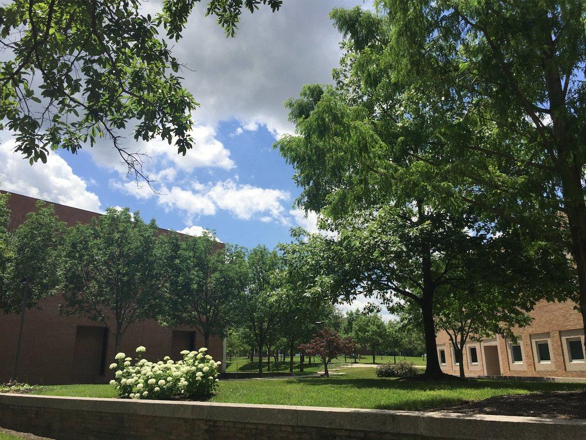 Wright State University Dayton Oh On Twitter Fall Semester
