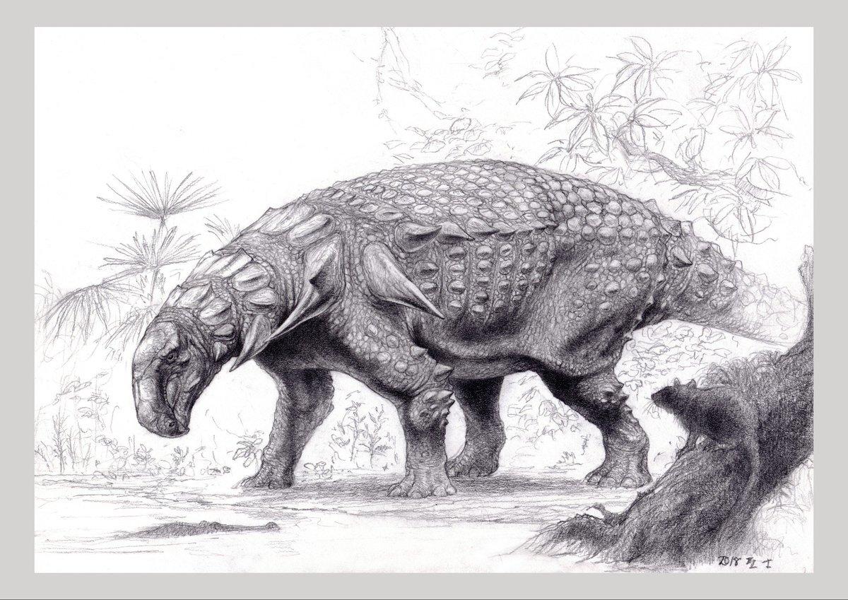 """らえらぷす/ジュラルC a Twitter: """"ノドサウルス科の大型鎧竜(全長約6m ..."""