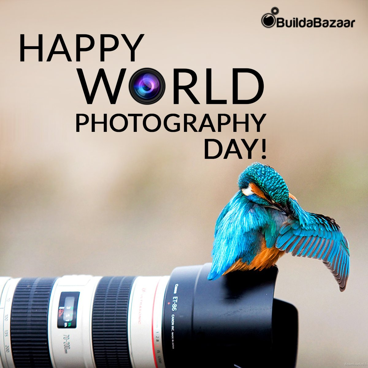 Buildabazaar On Twitter If You Are Truly Successful In Capturing The Pulse Of Life Then You Can Speak Of A Good Photograph William Klein Happy World Photography Day From Https T Co Yets87pli6 Worldphotographyday