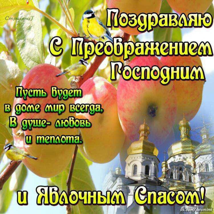 Картинки преображение господне и яблочный спас
