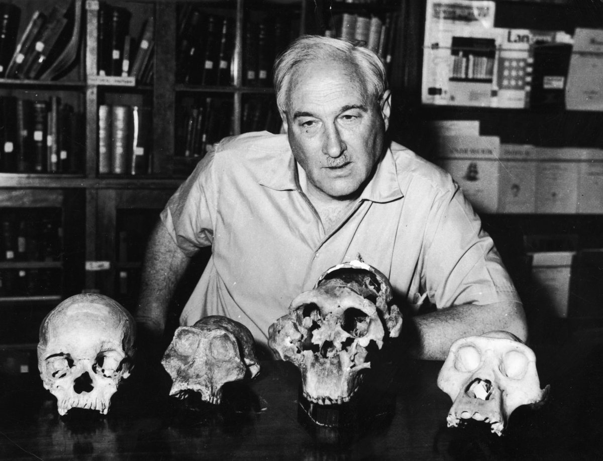 Today we remember Louis Leakey, born #OnThisDay in 1903. Leakey devoted his life to uncovering and sharing our human story and we are proud to carry on his legacy. #OTD leakeyfoundation.org/louis-leakeys-…