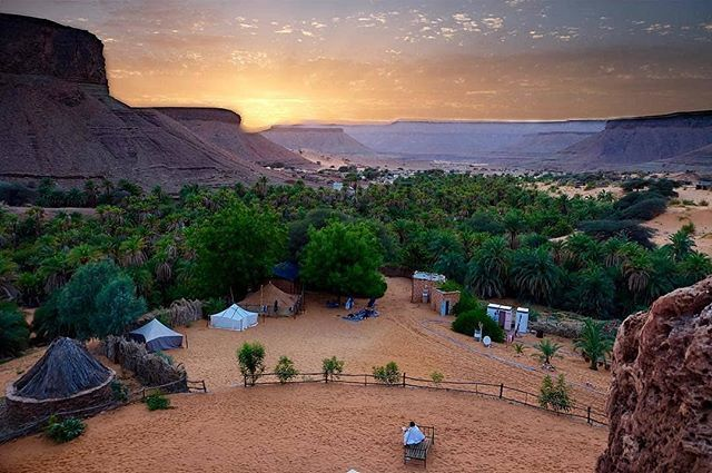 "CheckoutAfrica on Twitter: ""Terjit, Mauritania  #Terjit #Oasis  @mimundosinfronteras #terjit #adrar #terralodge #africancamp #exploreafrica  #travelafricans #travelafrica #checkoutafricatravel  https://t.co/LuMo4gpplp… https://t.co/ejCWSbMUEW"""
