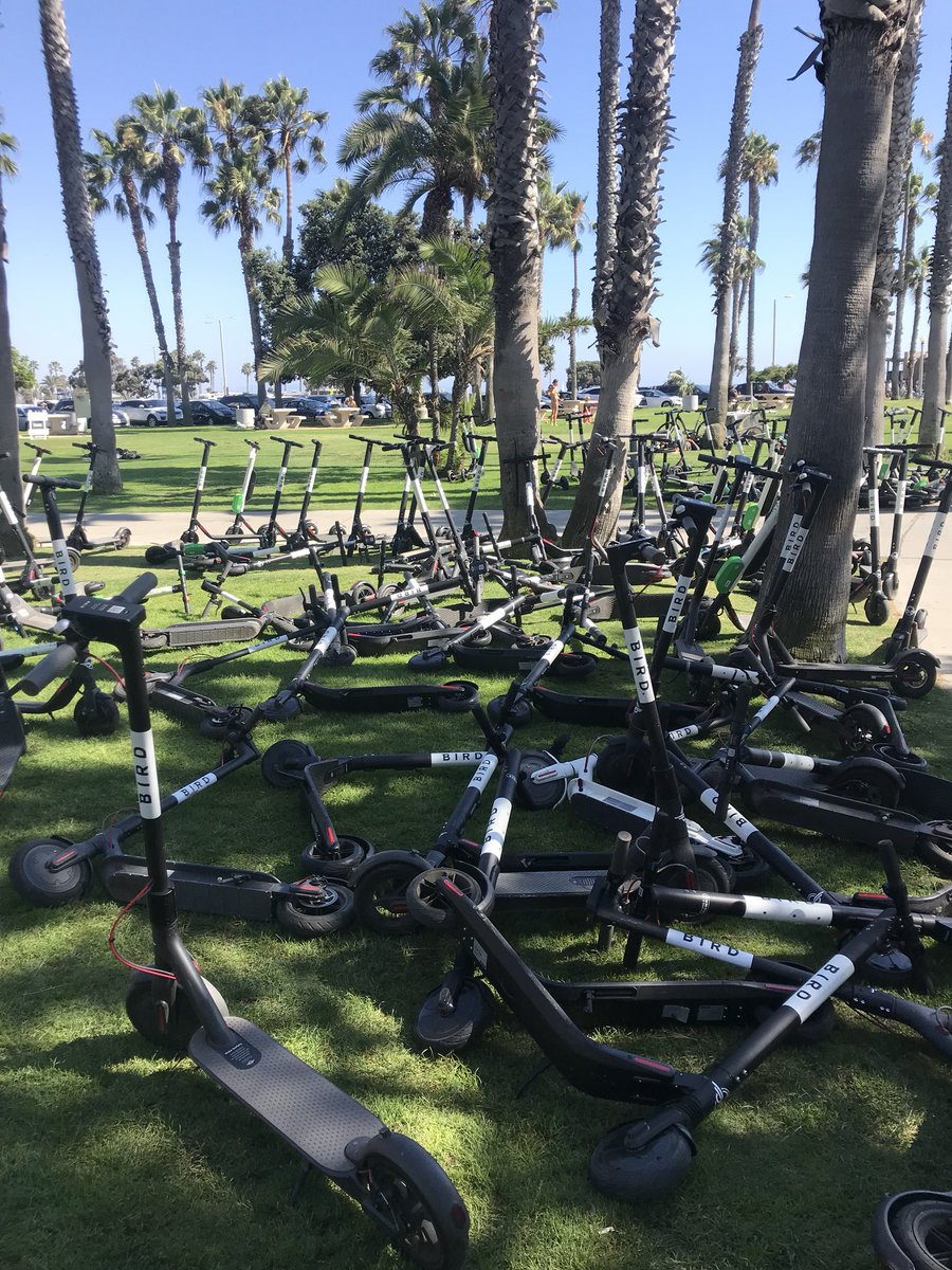 A startling photo of abandoned Birds shows the electric-scooter backlash has begun