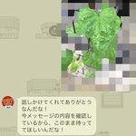 植物の写真を送るだけで?丁寧に対処法を教えてくれるアース製薬のLINEが有能すぎる!