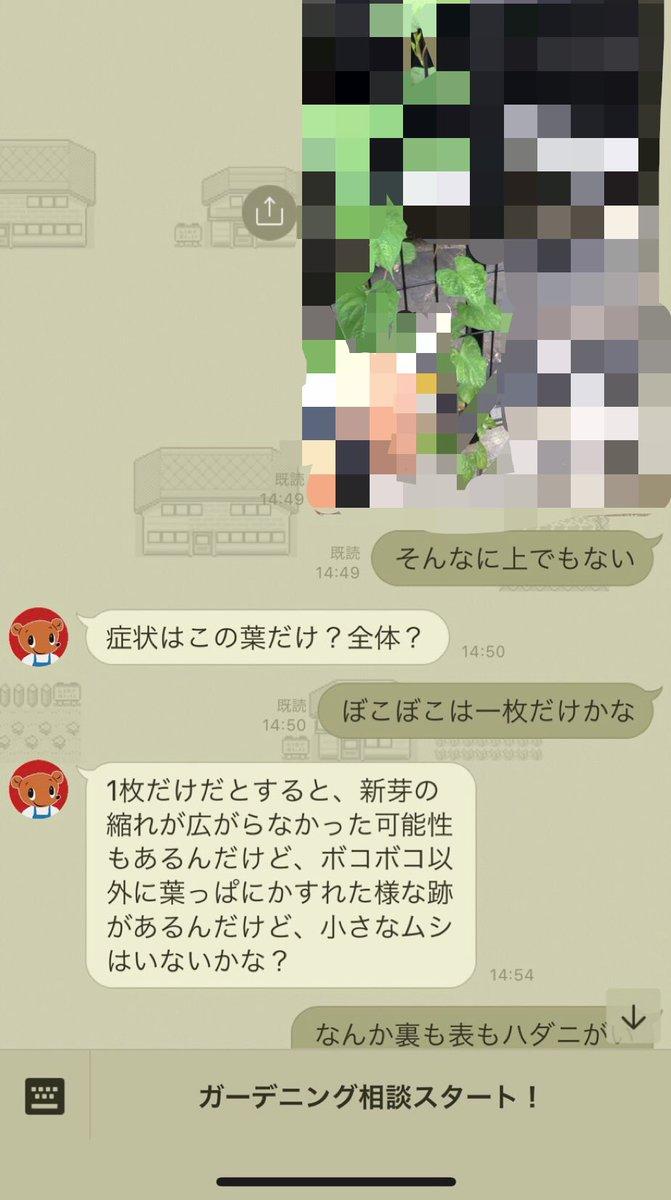 さん (3_3)3.2♂0.9♂育児さんの投稿画像