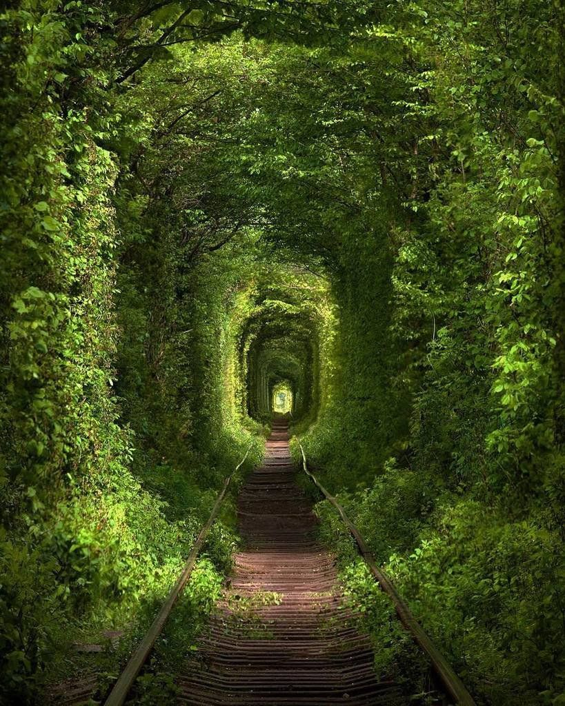 If Light At End Of Tunnel Is Green You >> Fubiz On Twitter Hypnotizing Green Tunnel By Sergey Polyushko
