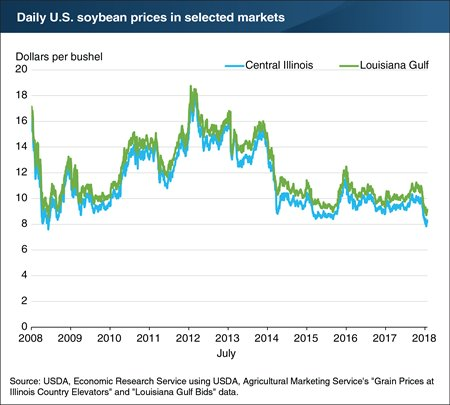 Daily US soybean prices in selected markets