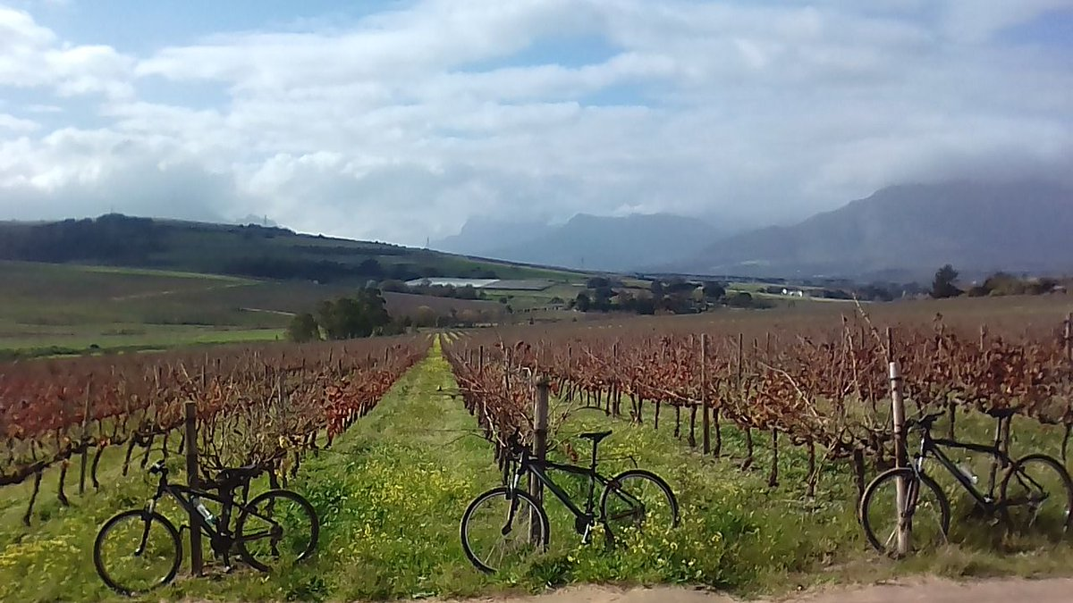 Wineries and history of these wineries in the Western Cape