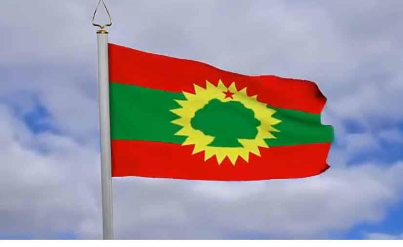Oromo Liberation Front : Latest News, Breaking News Headlines
