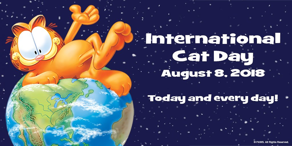 Lets hear it for #cats! ME-OW! #InternationalCatDay #CatsOfTwitter