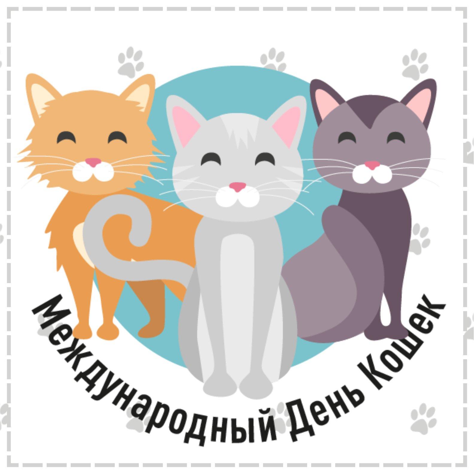 Всемирный день кошек прикольные картинки