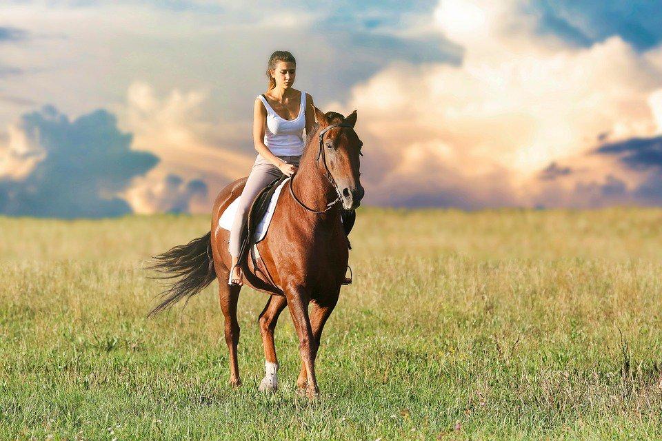 Fare #Equitazione fa bene a corpo ed anima!https://animali.moondo.info/?p=239#BeneficiDellequitazione #BeneficiDelloSport #Ipoteca #Sport  - Ukustom