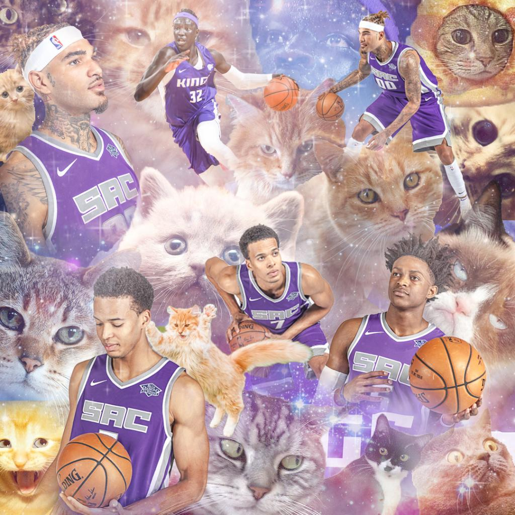 Happy #InternationalCatDay to some of our favorite 😸 https://t.co/ljru67YMuZ