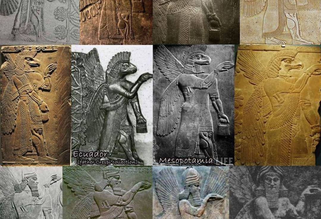 Ancient Astronots and Anunnaki  https://www. amazon.com/gp/aw/d/172094 220X/ref=dbs_a_w_dp_172094220x &nbsp; …   #nibiru #planetx #marduk #anunnaki #amonra #wingedglobe #Sun #shafakgokturk #spaceship #eagleship #anunnakieverywhere  #anunnaki_theory #ancientastronots @viamaristourss @ViaMarisTravel<br>http://pic.twitter.com/WmMl7W2xBj