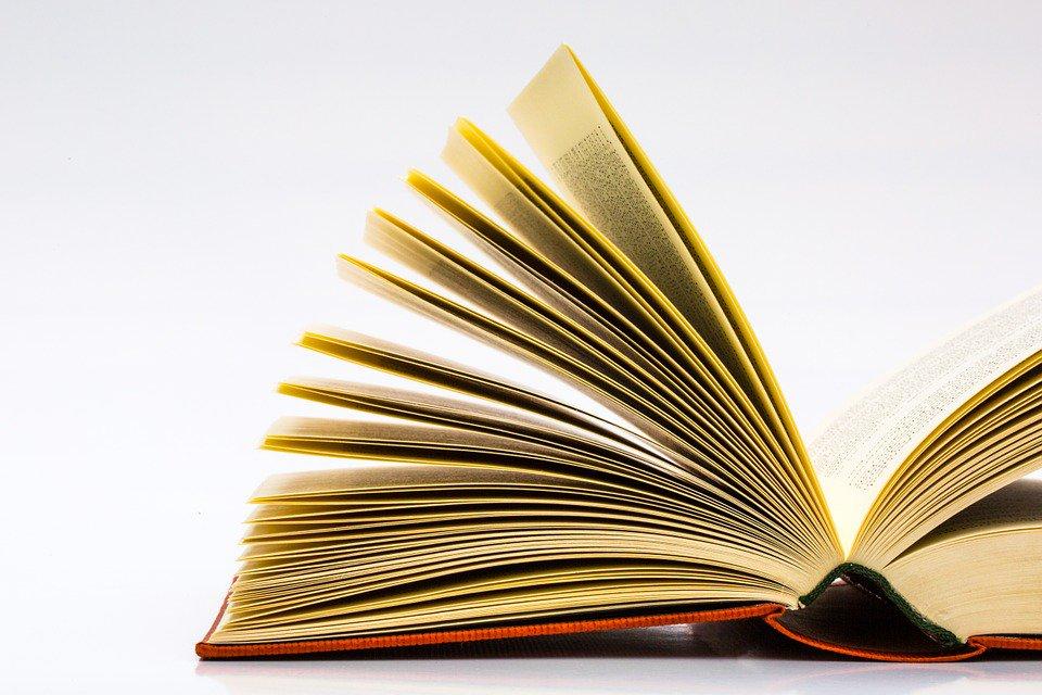 book Der Mann,