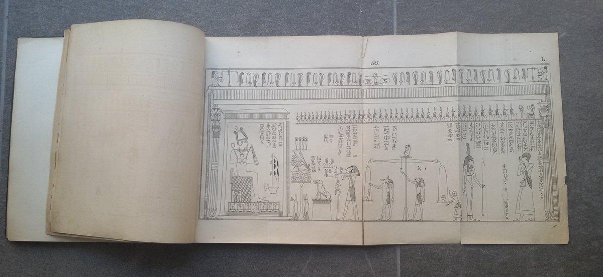 Buon #BookLoversDay! Sapevate che la nostra Biblioteca possiede una delle prime pubblicazioni del Libro dei Morti? Si tratta di questo volume del 1842, scritto dall'egittologo Lepsius. Curiosità: il papiro analizzato è il Libro dei Morti di Iuefankh, visibile nelle Sale Storiche!  - Ukustom