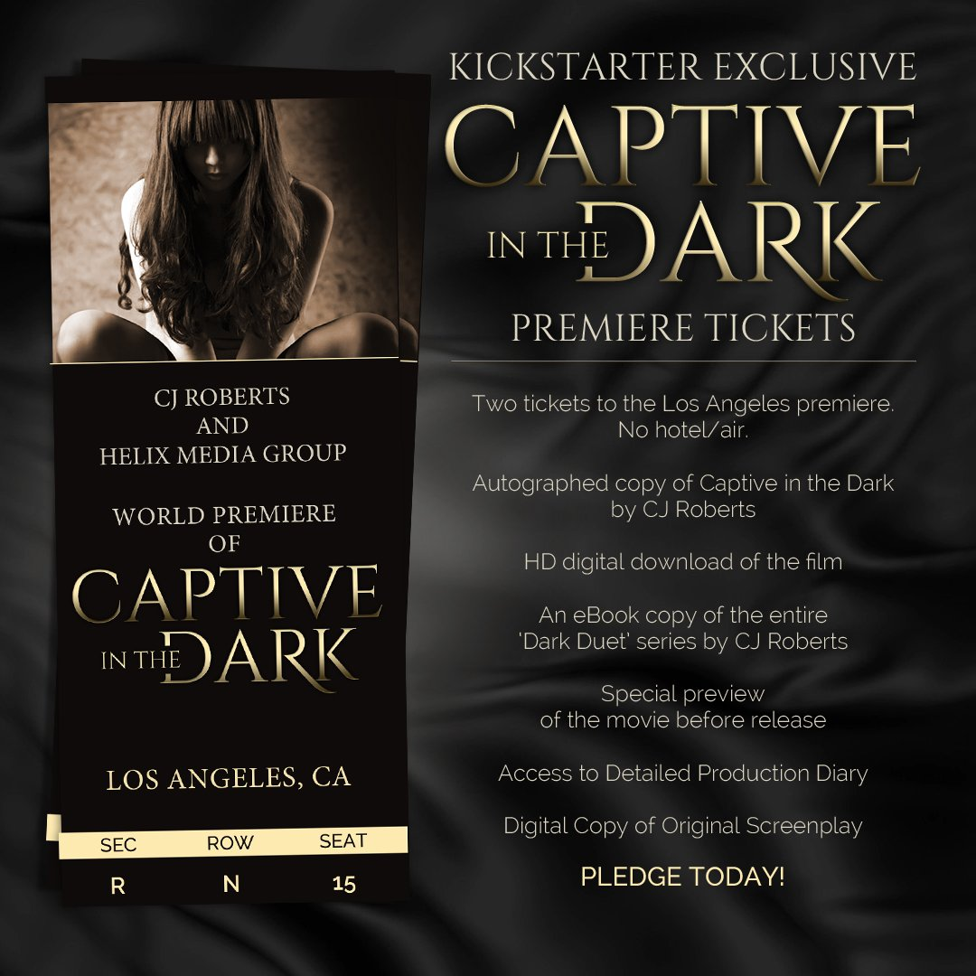 Captive In The Dark Book