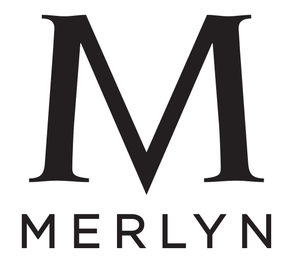 the merleau ponty reader